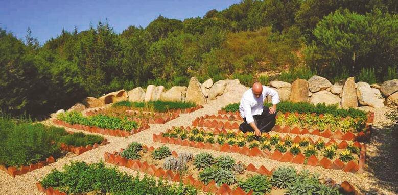 Colonna Pevero,  garden