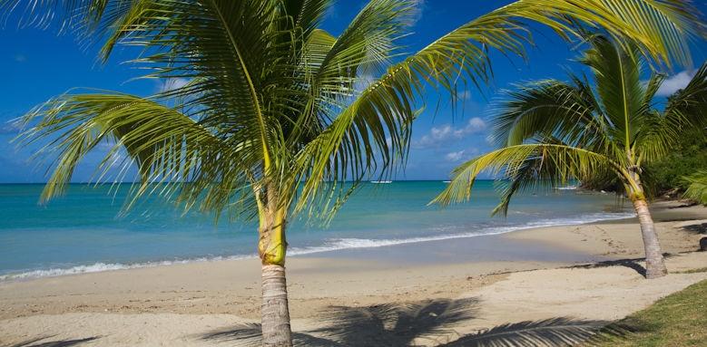 Calabash cove resort and spa, beach