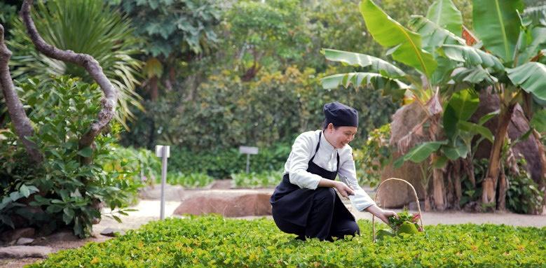 Six Senses Ninh Van Bay, organic garden