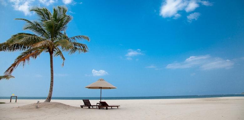 Uga Bay, beach and palm