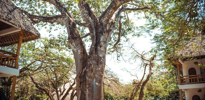 Waterlovers Beach Resort, trees