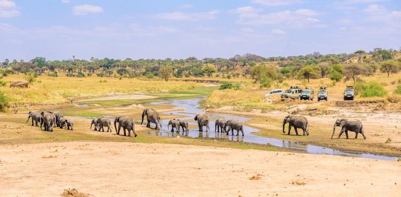Highlights of Tanzania, Tarangire national park