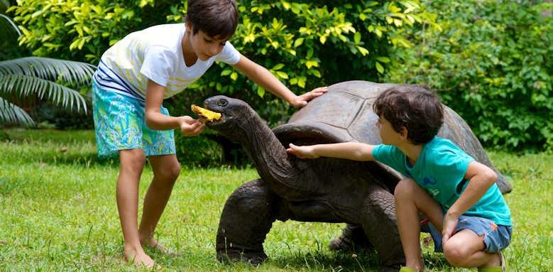 Les Villas D'Or, giant tortoise