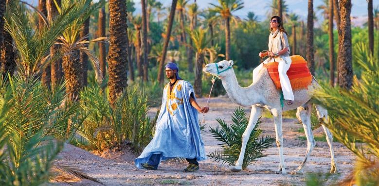 fours seasons marrakech, camel ride