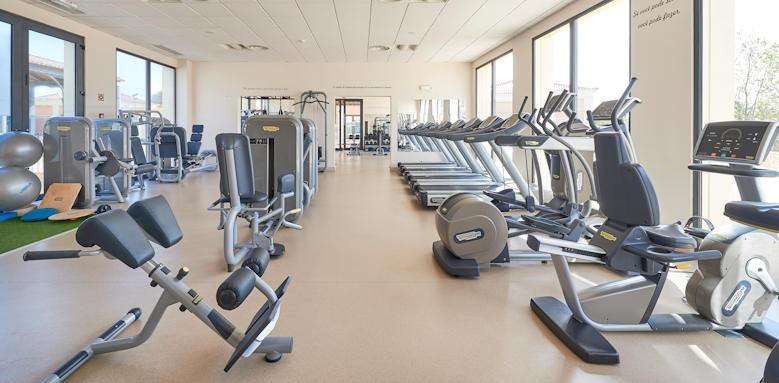 Cascade Wellness Resort, Gym image