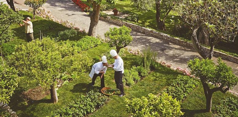 belmond grand hotel timeo, herb garden