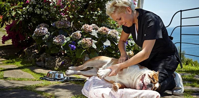 belmond hotel splendido, dog massages