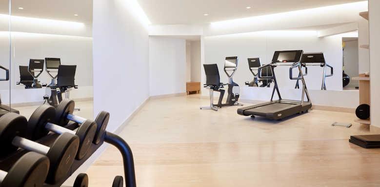 Daios Cove Luxury Resort & Villas, gym