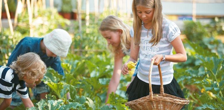 creta palace, vegetable garden
