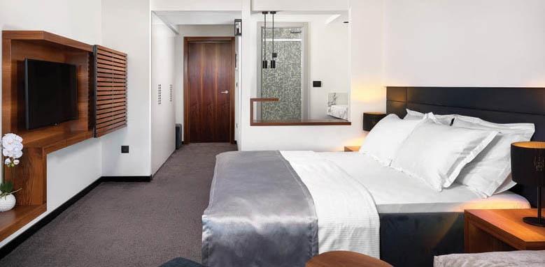 Boutique Hotel Ani, superior room