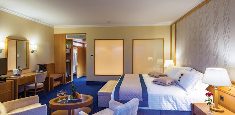 Athena royal, junior suite with land view