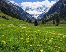 Mayrhofen, thumbnail